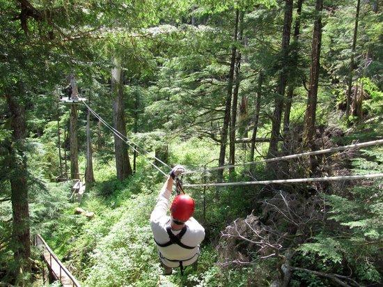 bear-creek-ziplines